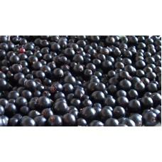 Смородина черная (сорта)