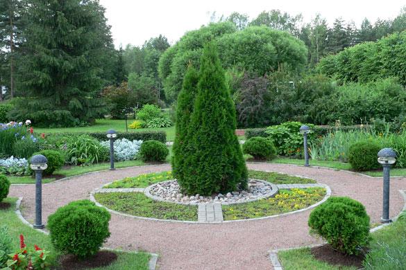 Купить кустарники СПб